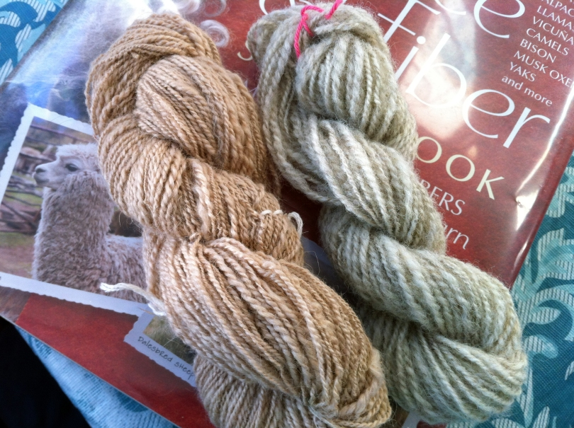 Camel down and Romney, my first and last skeins of the Tour.